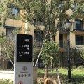 舟山东方和园-小米之家酒店式公寓