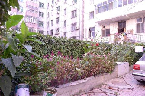 哈尔滨和平旅店