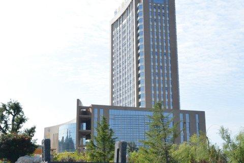 山东龙湖大酒店