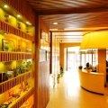 鲁科88商务连锁酒店(泰安东岳大街店)
