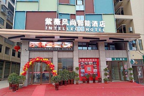 邵阳紫薇风尚智能酒店