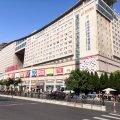 上海王巢微五星酒店