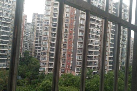 武汉盘龙公寓