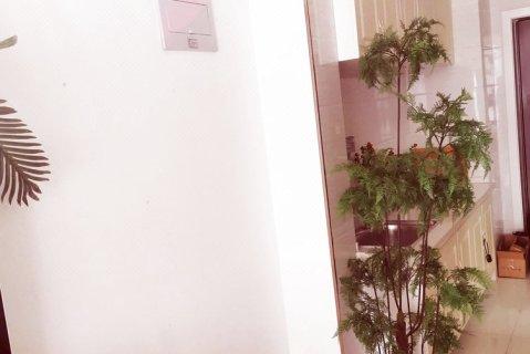 洛阳麦田mt公寓(2号店)