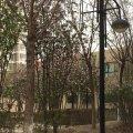北京巩天明公寓(6号店)